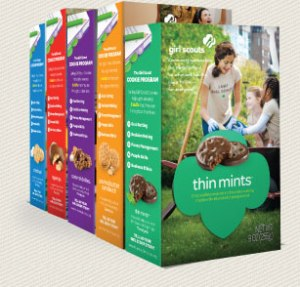 Image from girlscouts.org