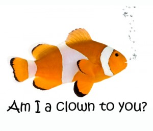 clown-fish-300x257